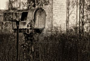 Snail Mail by jeffcrass