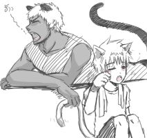 kuroko no basuke_Panther and cat by LuCiFelLo