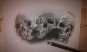 skull study by nickmouture
