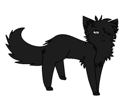 Hollyleaf by starii-flames