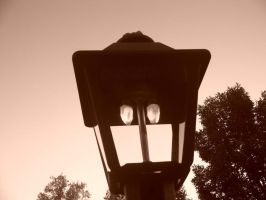 the lamp post by twilight303028
