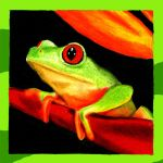 Colored Pencil Frog by DanBergundy