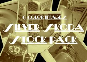 Silver Skoda Stock Pack by TheLadyAmalthea