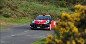 Peugeot 207 S2000 by Lancia-Stratos