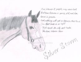 Silver, horse that is by HS3055