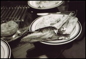 eating fish by pyros