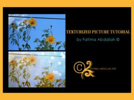 Texturized Picture Tutorial by pweetylucious