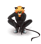 Chat Noir by Hey-its-Jess