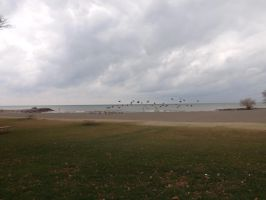 Hamlin Beach State Park - 10 by blackhavikgraphics