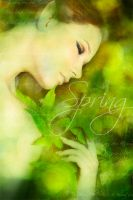 Spring by YlLee