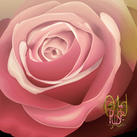 Old Rose by So-ghislaine