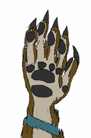Anthro Wolf Hand Practice by V8Arwing67