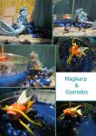Gyarados and Magikarp Details by Ovidiu-Hiei
