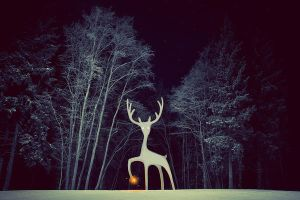 North Deer by Eredel