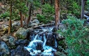 West Chicago Creek Colorado by Frankief