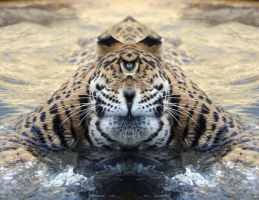cycloptic leopard by thewindwarrior