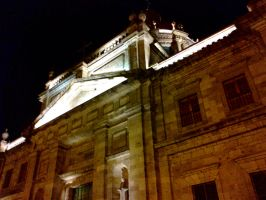 Guadalajara at Night 1 by Foxdale