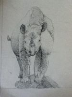 Rhino -Stippling- by TheDragonInTheCenter