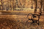 Fall Upon Me by UrbanRural-Photo