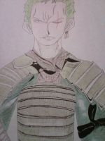 Roronoa Zoro in a Samurai Armour by TenshiNoAme
