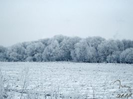 Winter in Slovakia by cool-tery