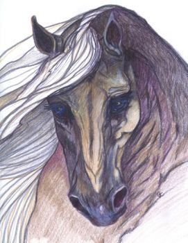Horse Watercolor Pencil by animal-artists