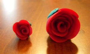 juana's roses by Remyreaper