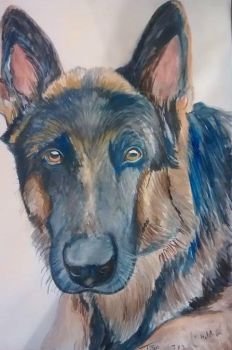 Tyson the German Shepard by JamieJones93