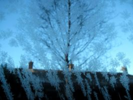 Frost by 666squirrelOFdeath
