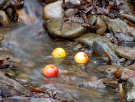 Apples in the water by Roksolana