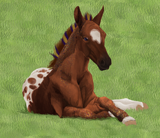 1779 Dream of Glory RSS-Foal ref by YleniaBax