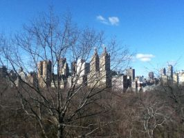 City from Central Park 2 by Hawklegs
