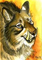 Tuskcat ACEO by Foxfeather248