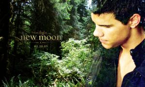Jacob Black and the Forest by anddthen