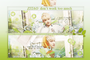 ZiTao#signs by DelAbstyle