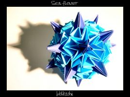 Sea flower by wolbashi