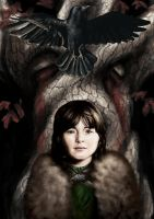 Bran and the Three Eyed Crow by kozick