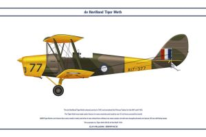 Tiger Moth Australia 3 by WS-Clave