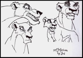 Lion King- Zira by Jefrma