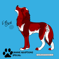 Wolf Adoptable 1 -CLOSED- by CanineAdoptions