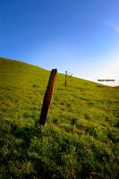 Fence Posts by LePhotagDeAbnormal