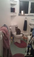 Tipsy Knows How To Use The Toilet by Emox-Lovez