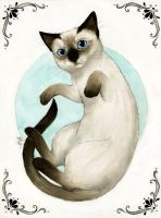 Playful Siamese by NaylaSmith