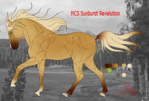 MCS Sunburst Revelution by Emiliastar
