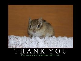 Thank You - Comment and Visit by MichelLalonde