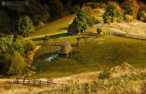 Autumn colors in Apuseni Mountains 6 by adypetrisor