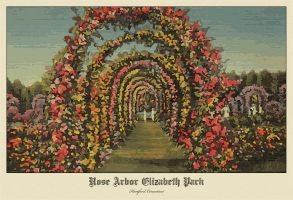 rose arbor by ironman8855