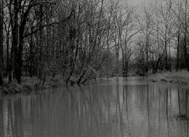 A dark pool... by thewolfcreek