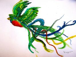Painter Quetzal by Catengue