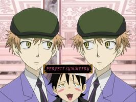 Hitachiins: Perfect Symmetry by missautumnrose